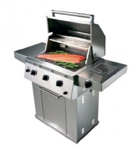 mindre grill 1